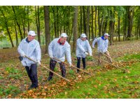 Shchekinoazot Team Took Part in Improvement of Platonov Park